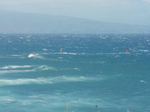 Some windsurfers in Paia