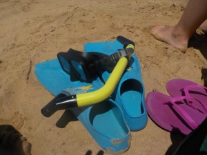 The snorkel gear I rented in Maui.